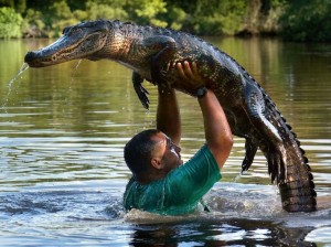 Dirty Dancing Alligator