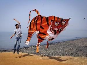 tigre papier